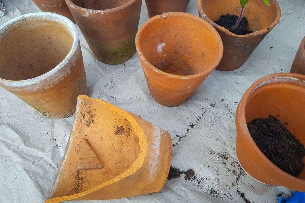 gardening May