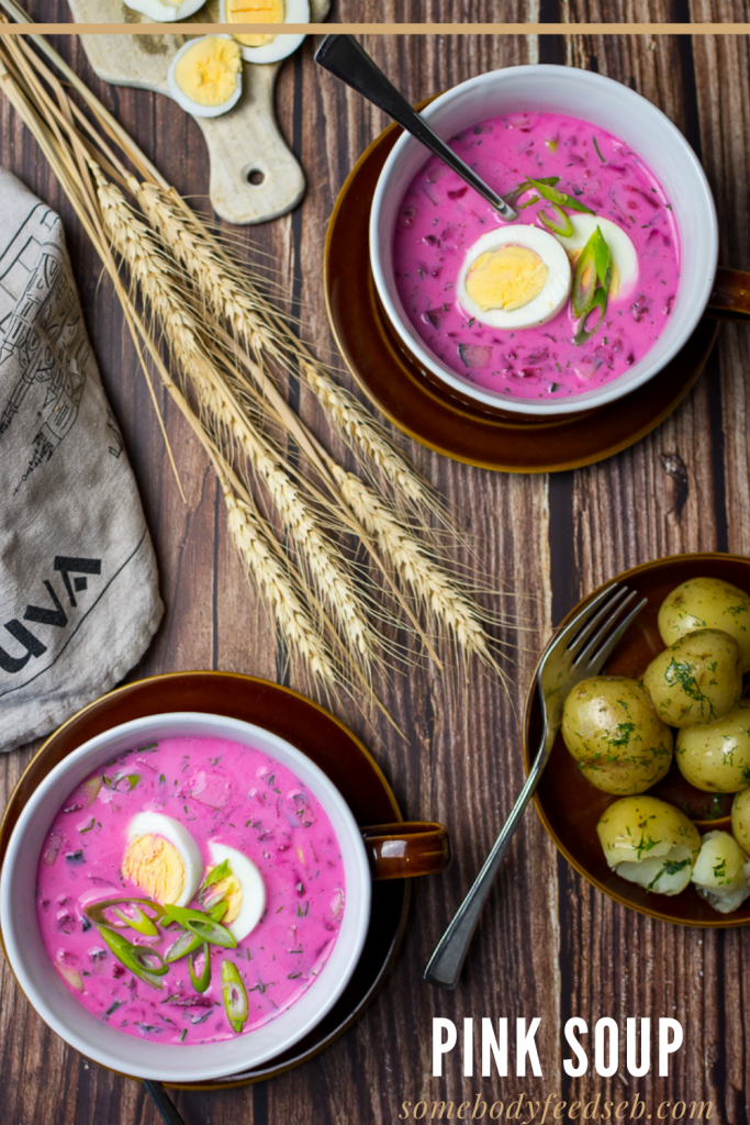 lithuanian pink soup