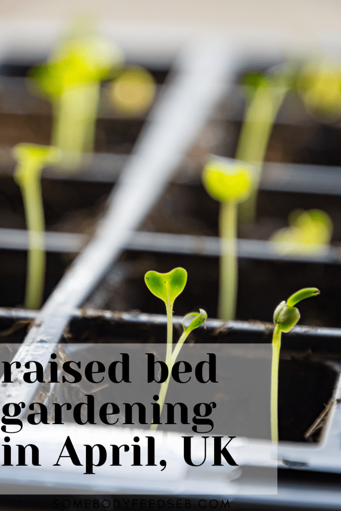 Gardening April