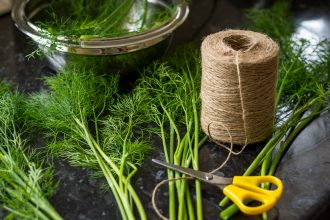how to preserve dill